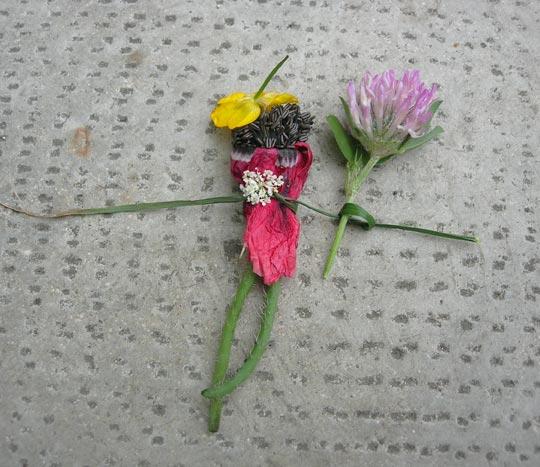 fleur_maya