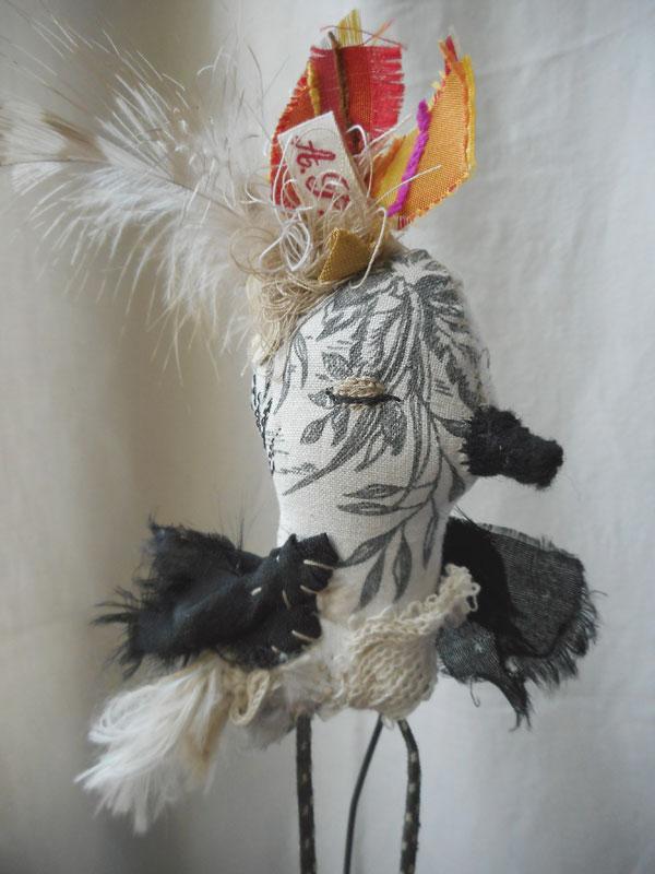 oiseau5